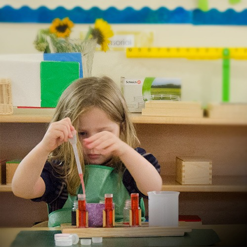 Montessori preschool for primary children