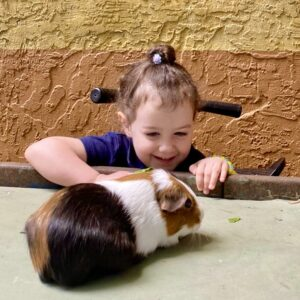 montessori pets for learning