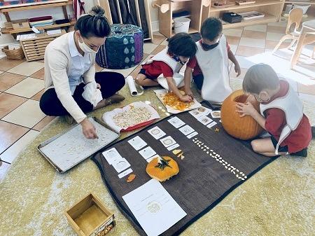 Montessori primary learning
